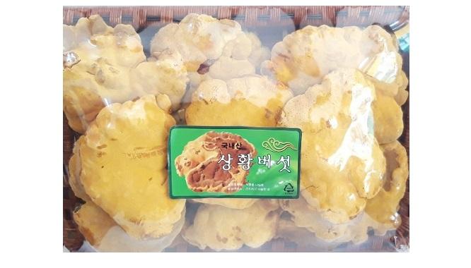 Nấm Thượng Hoàng Hàn Quốc Cao Cấp - 500g - Nutri